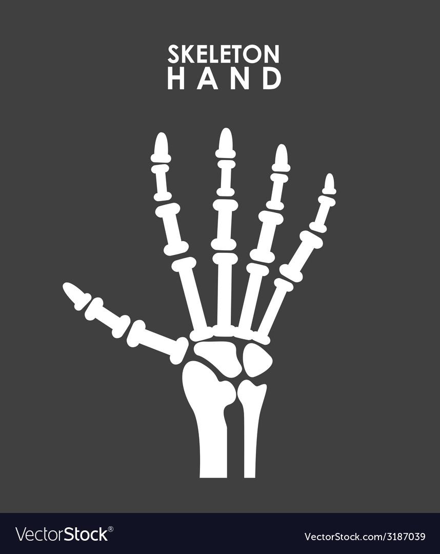 X rays design vector | Price: 1 Credit (USD $1)