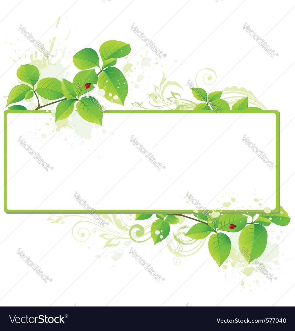 Leaves and floral frame vector | Price: 1 Credit (USD $1)