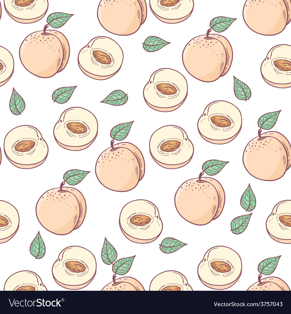 Peach with slice seamless pattern vector   Price: 1 Credit (USD $1)