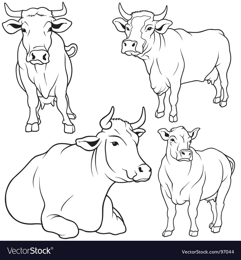Cow set vector | Price: 1 Credit (USD $1)