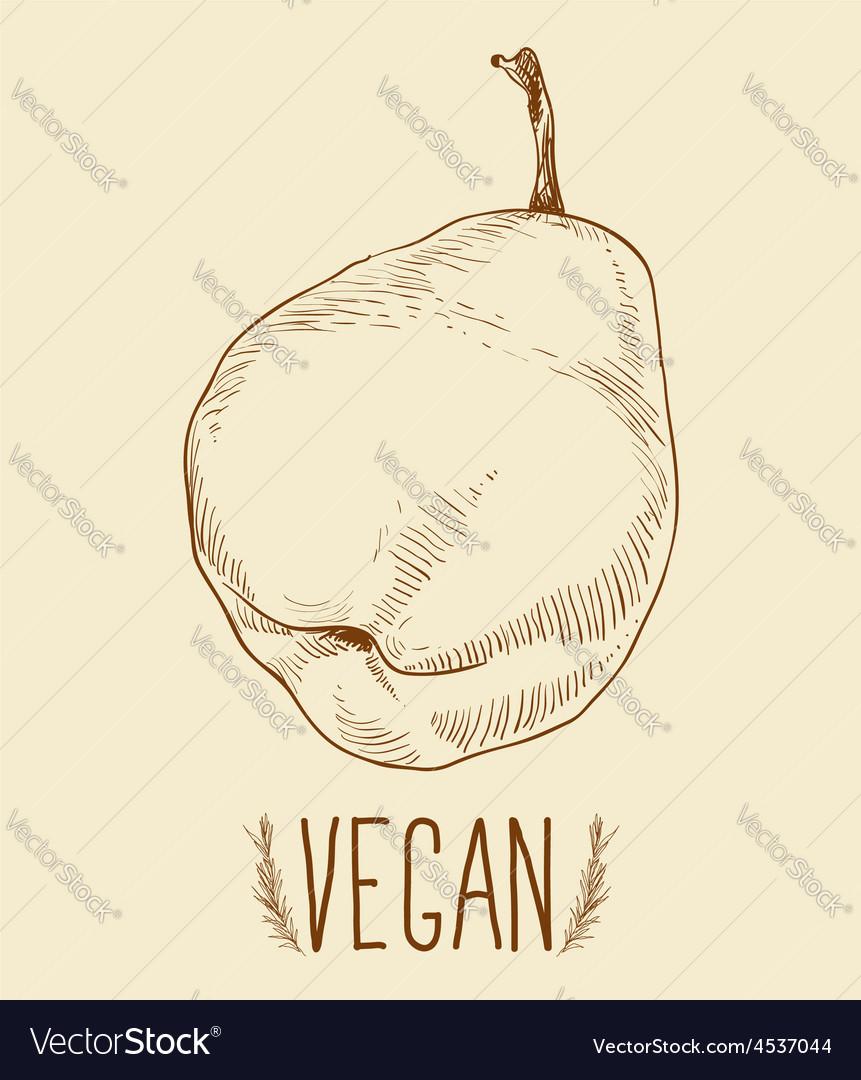 Pear fruit - vintage vector   Price: 1 Credit (USD $1)