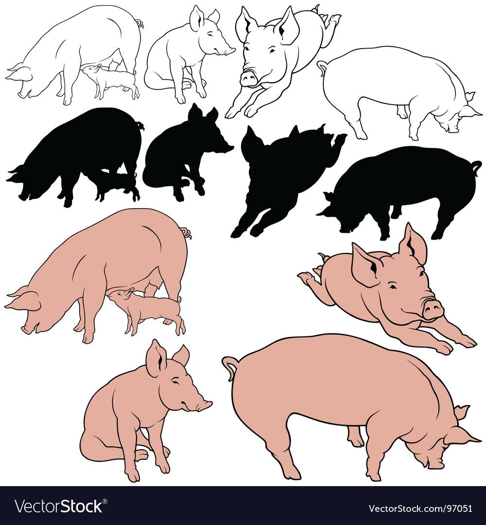 Pigs set vector   Price: 1 Credit (USD $1)