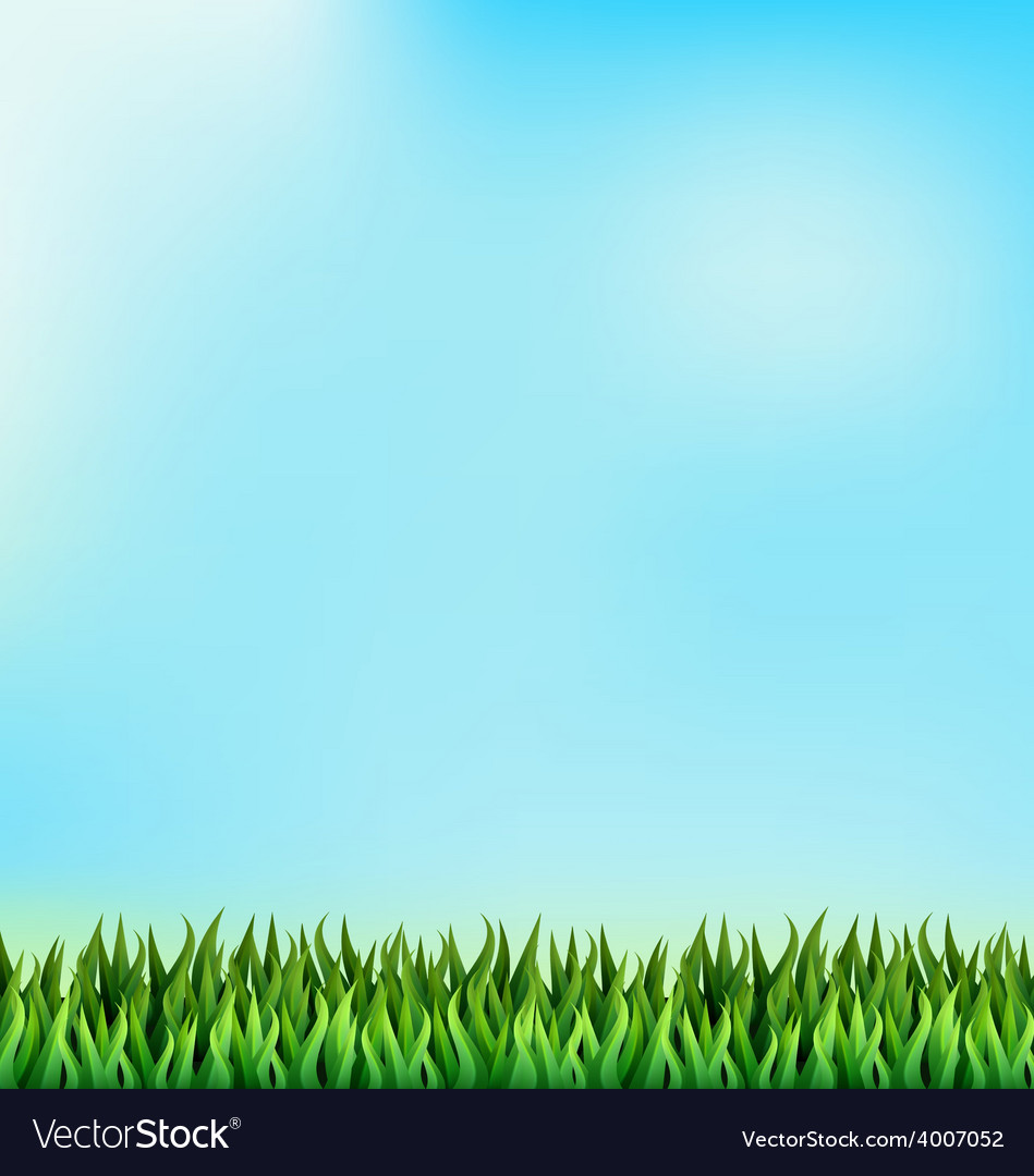 Green grass lawn on blue sky floral nature spring vector | Price: 1 Credit (USD $1)