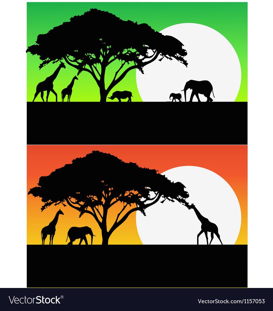 Safari background vector | Price: 1 Credit (USD $1)