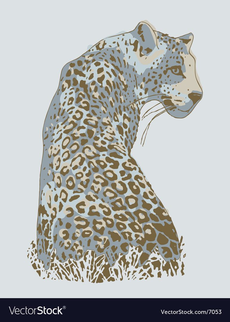 Wild cat vector | Price: 3 Credit (USD $3)