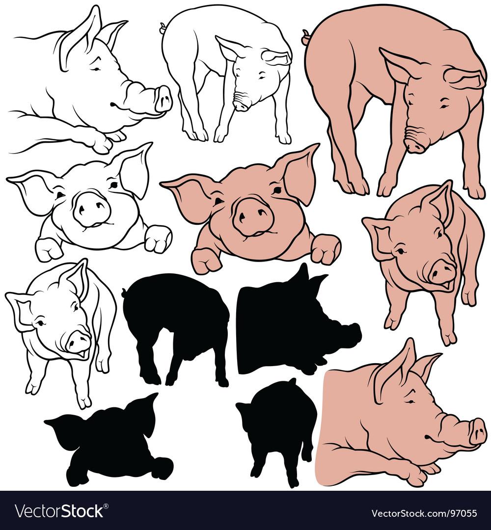 Pigs set vector | Price: 1 Credit (USD $1)
