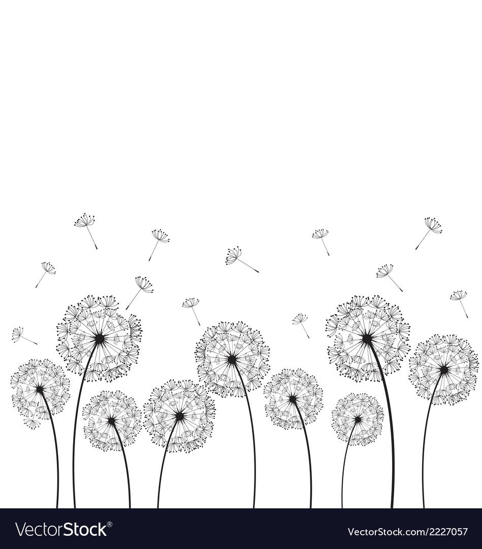 Dandelions plant vector | Price: 1 Credit (USD $1)
