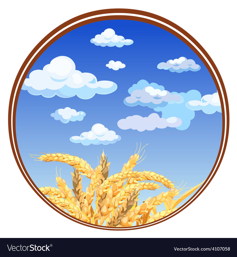Spikelets against the sky in a circle vector | Price: 3 Credit (USD $3)