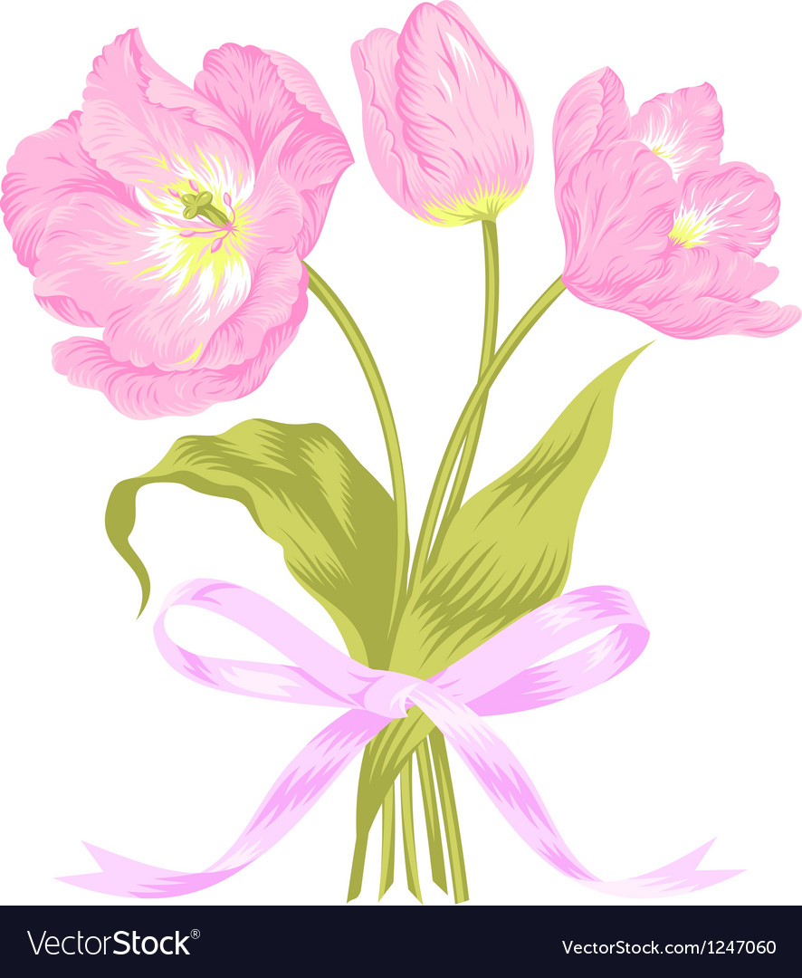 Tulips bouquet vector | Price: 1 Credit (USD $1)