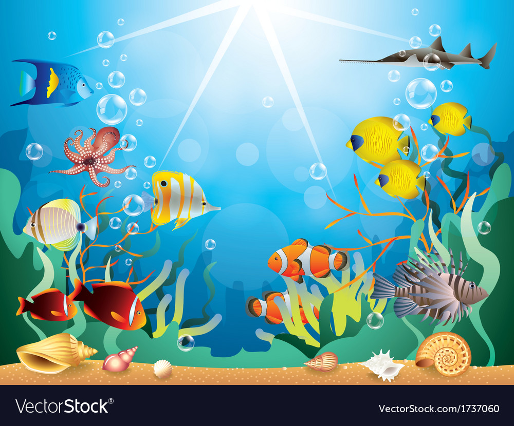 Underwater world vector | Price: 3 Credit (USD $3)