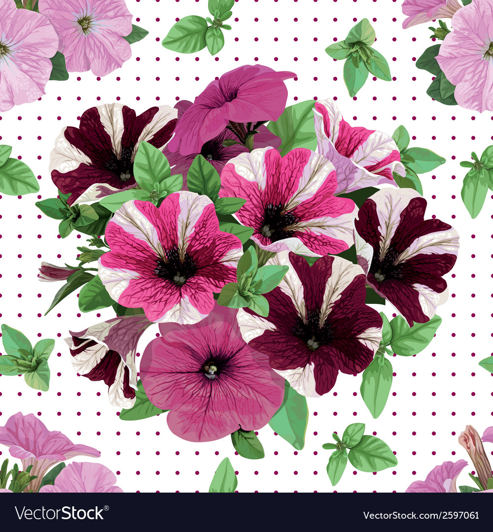 Seamless pattern bouquet of petunias vector | Price: 1 Credit (USD $1)