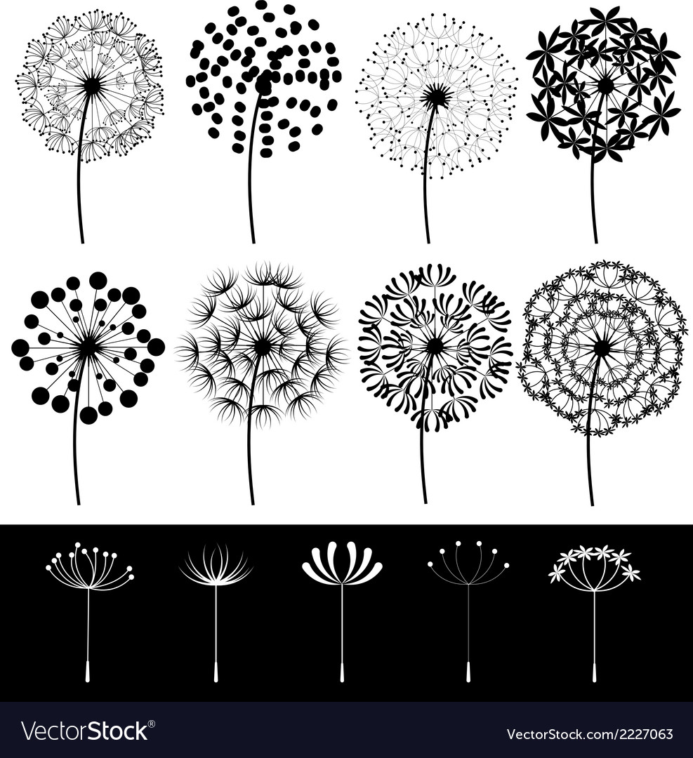 Dandelions set vector | Price: 1 Credit (USD $1)