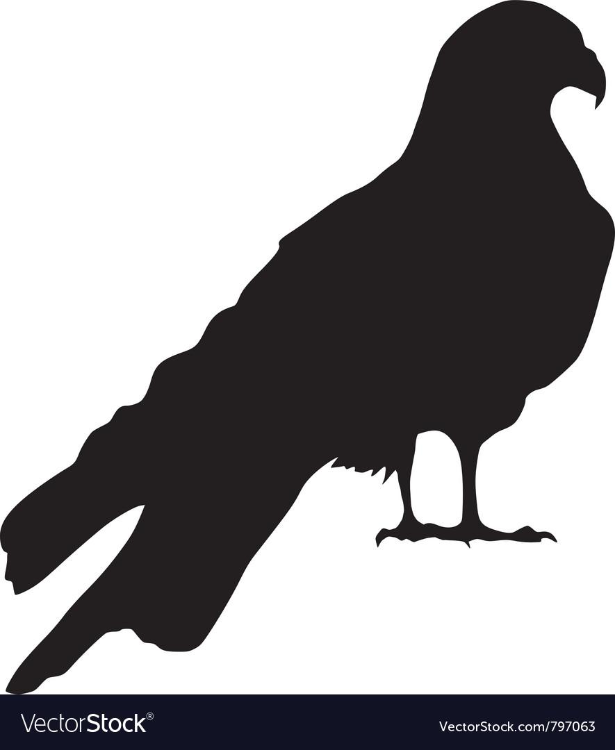Silhouette of falcon vector   Price: 1 Credit (USD $1)