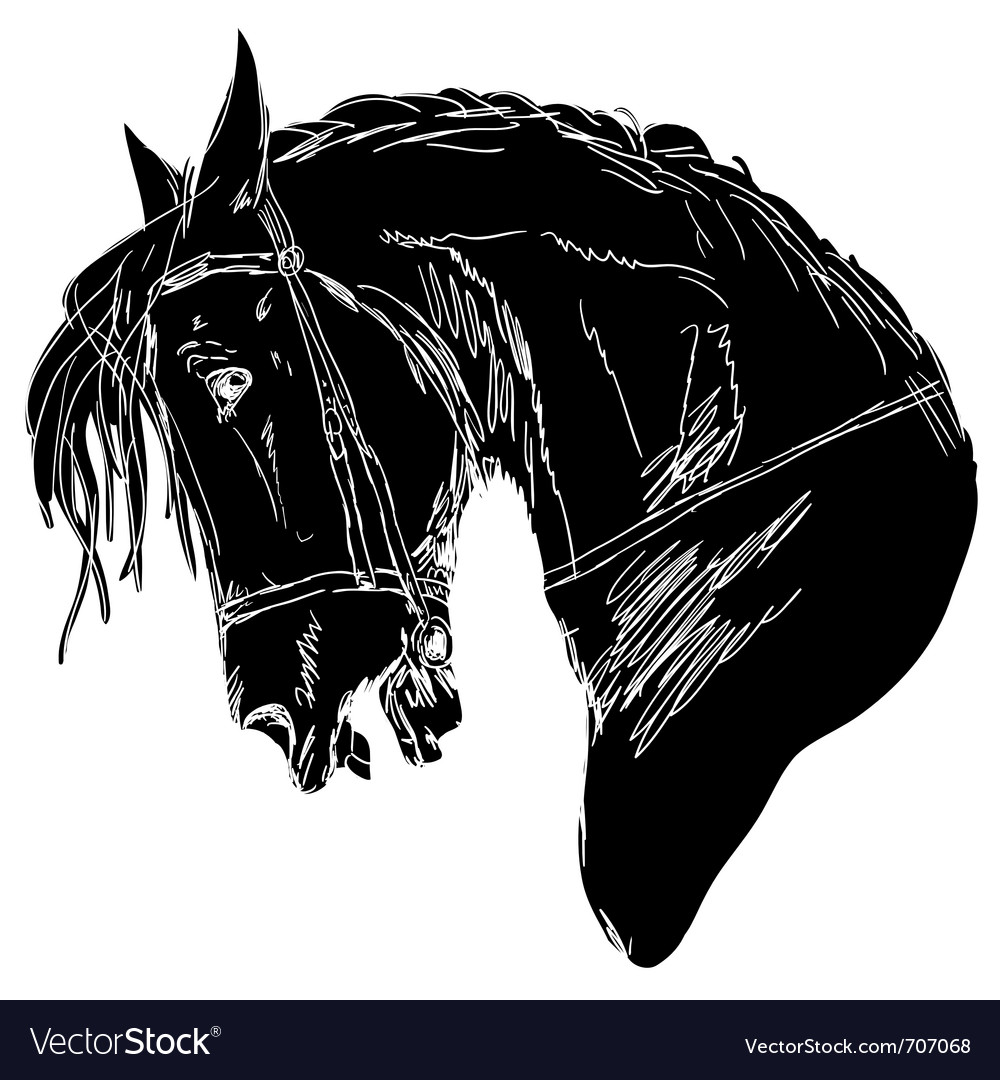 Black horse silhouette vector | Price: 1 Credit (USD $1)