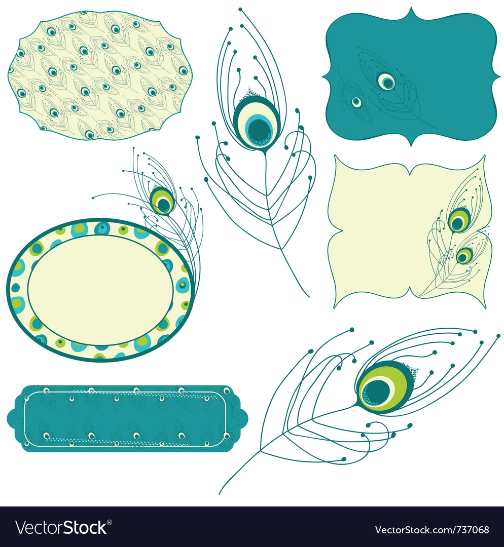 Peacock feather - design elements for scrapbook in vector | Price: 1 Credit (USD $1)