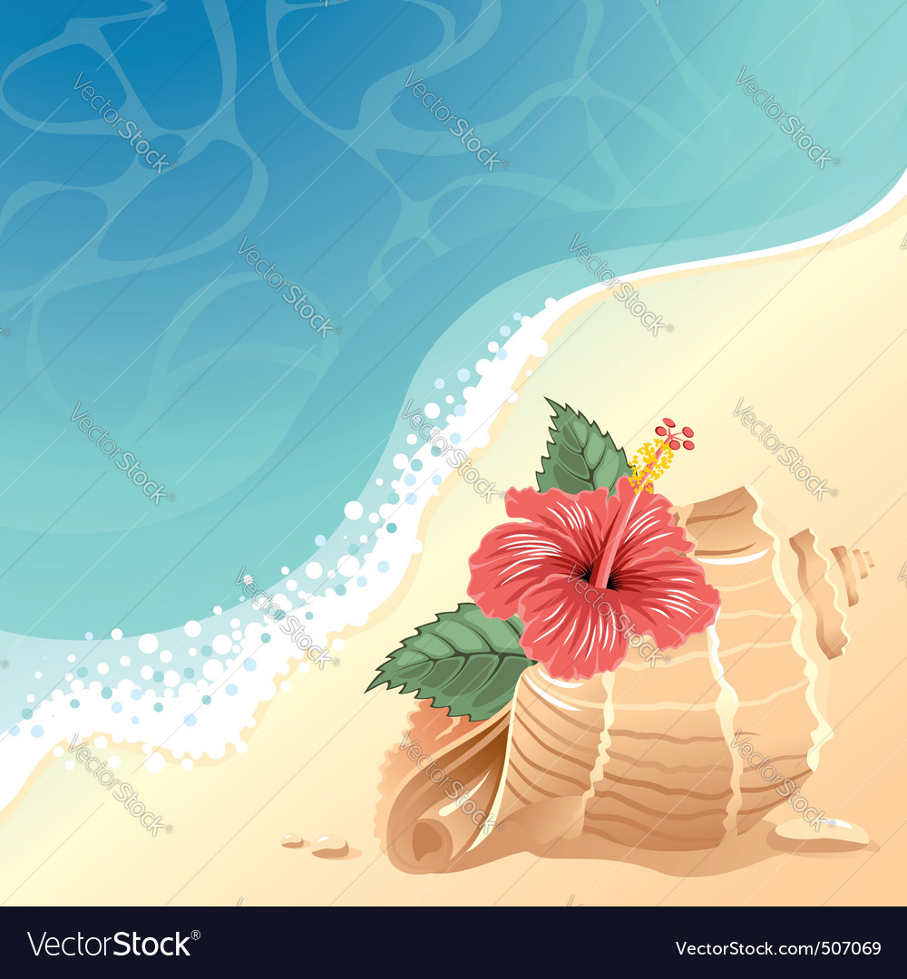 Sea background with shell vector | Price: 1 Credit (USD $1)
