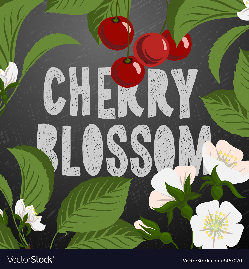 Floral background with cherry berries and cherry vector | Price: 1 Credit (USD $1)