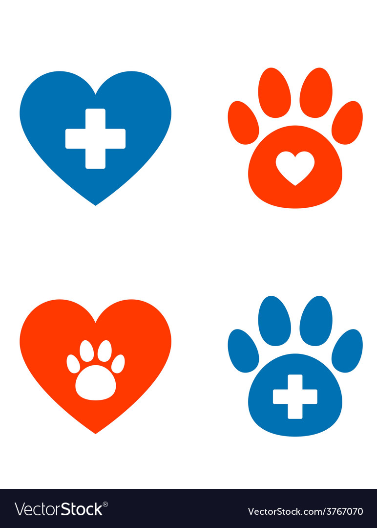 Veterinarian icons set vector | Price: 1 Credit (USD $1)