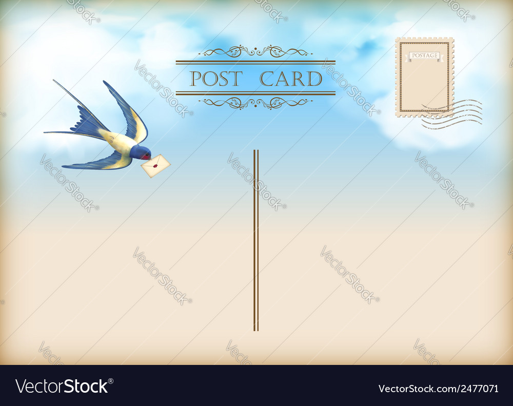 Sky bird letter mail postcard vector | Price: 1 Credit (USD $1)