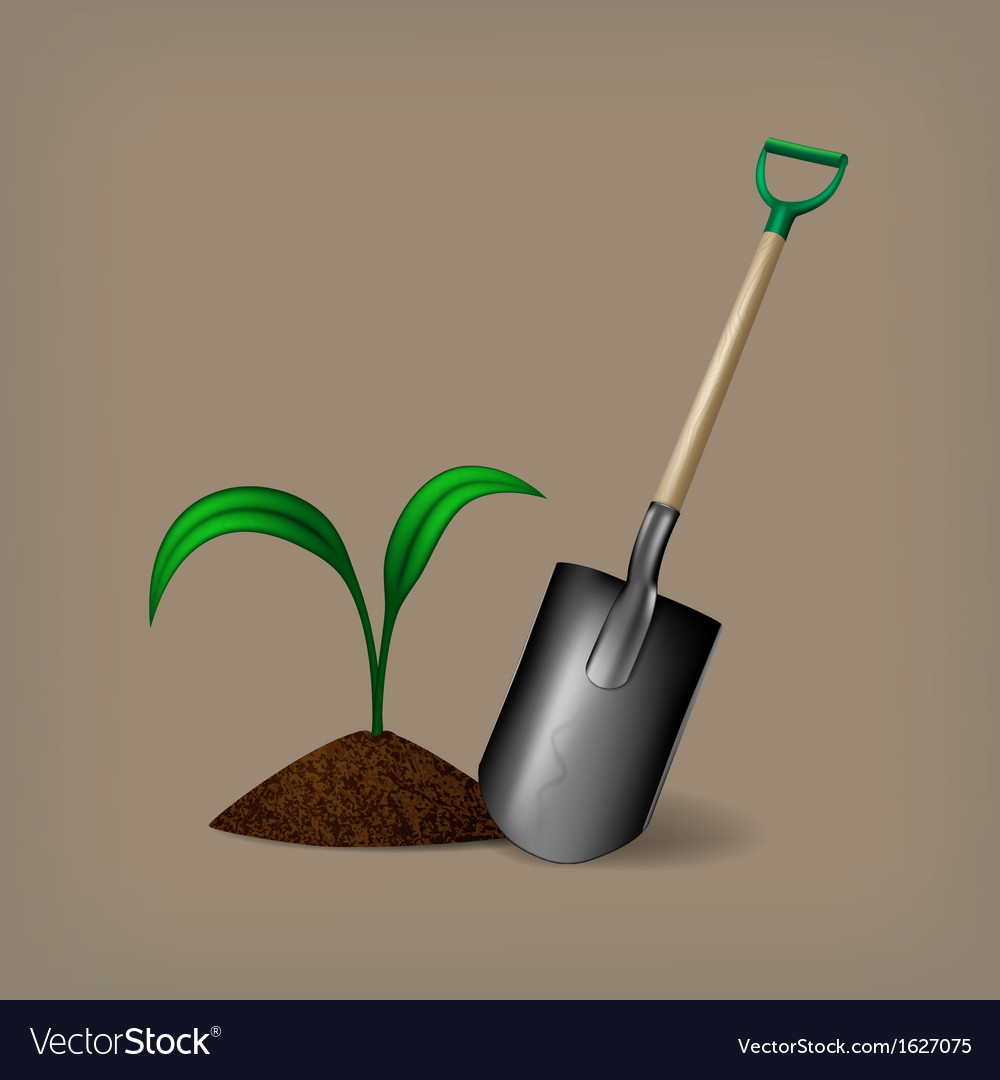 Garden spade and sprout vector | Price: 1 Credit (USD $1)
