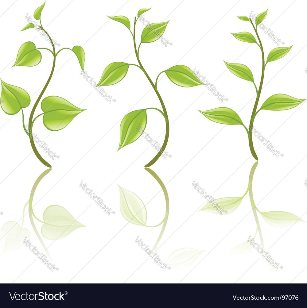 Branch design elements vector | Price: 1 Credit (USD $1)
