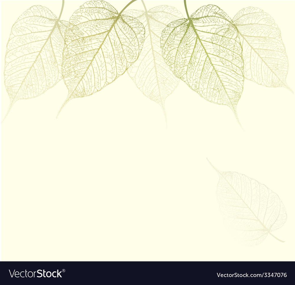 Fresh green leaves background vector | Price: 1 Credit (USD $1)
