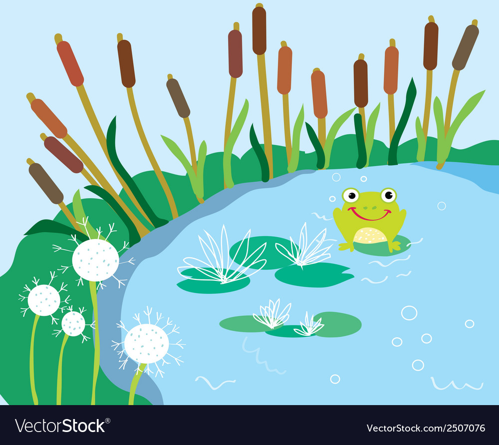 Lake cartoon with lily and frog vector | Price: 1 Credit (USD $1)