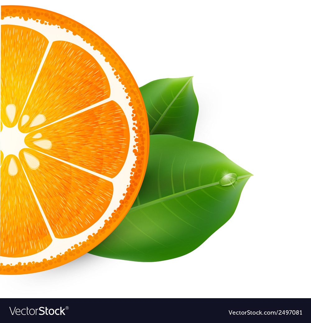 Background with orange vector | Price: 1 Credit (USD $1)