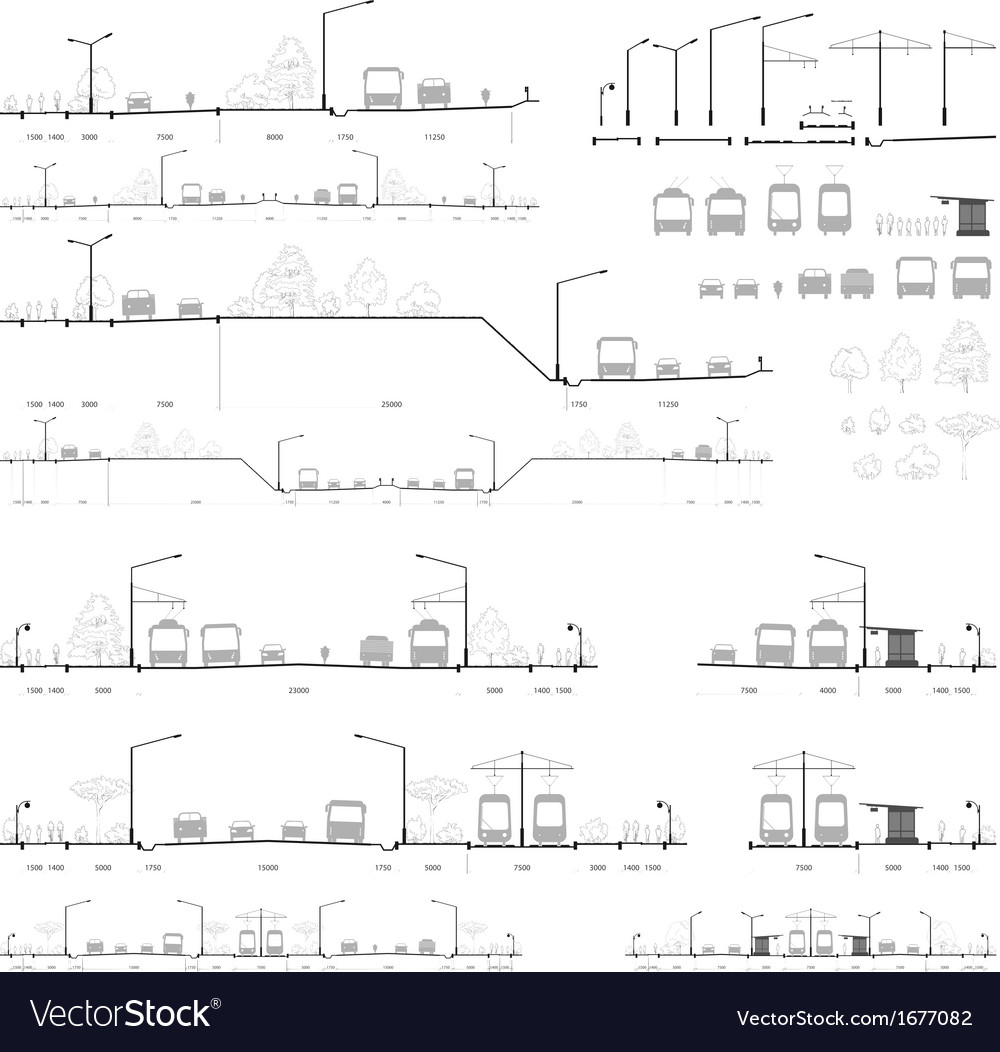 Set of city road cross-sections vector | Price: 1 Credit (USD $1)