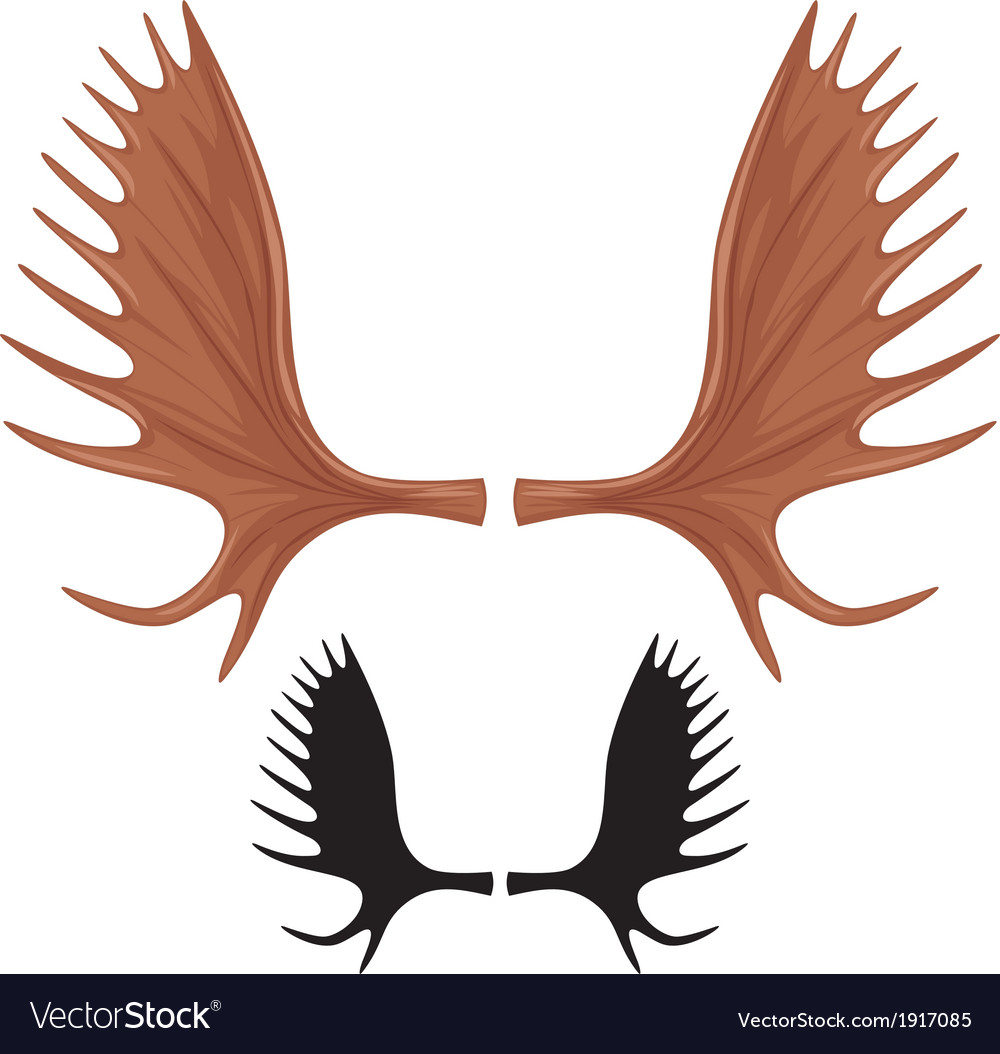 Horns of moose vector | Price: 1 Credit (USD $1)