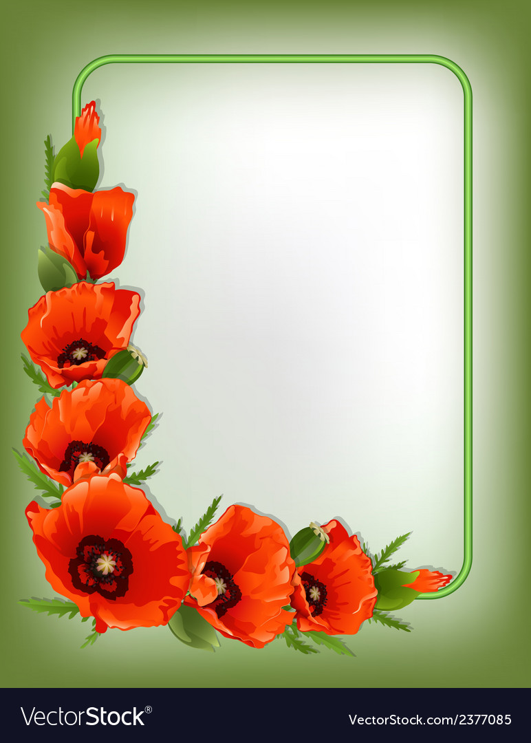 Red poppies floral frame vector | Price: 1 Credit (USD $1)
