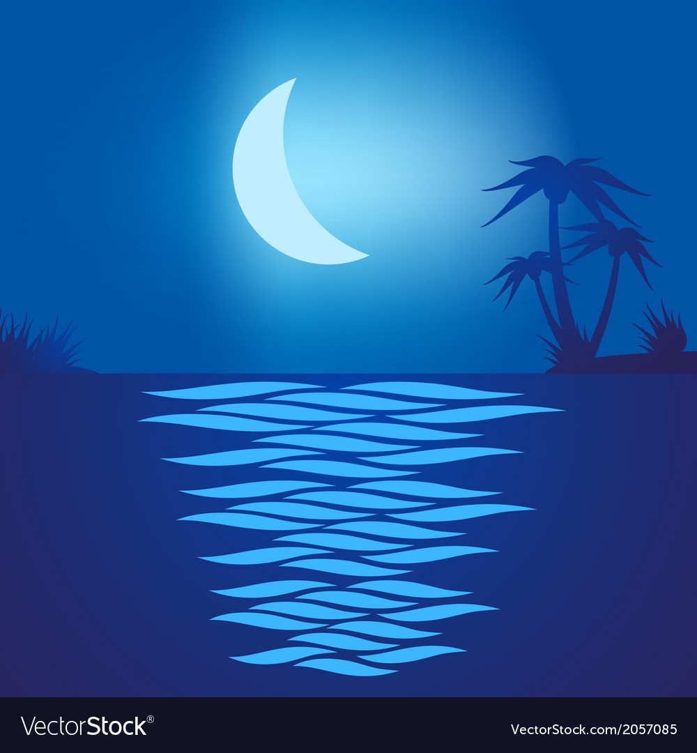 Tropical beach at night vector | Price: 1 Credit (USD $1)