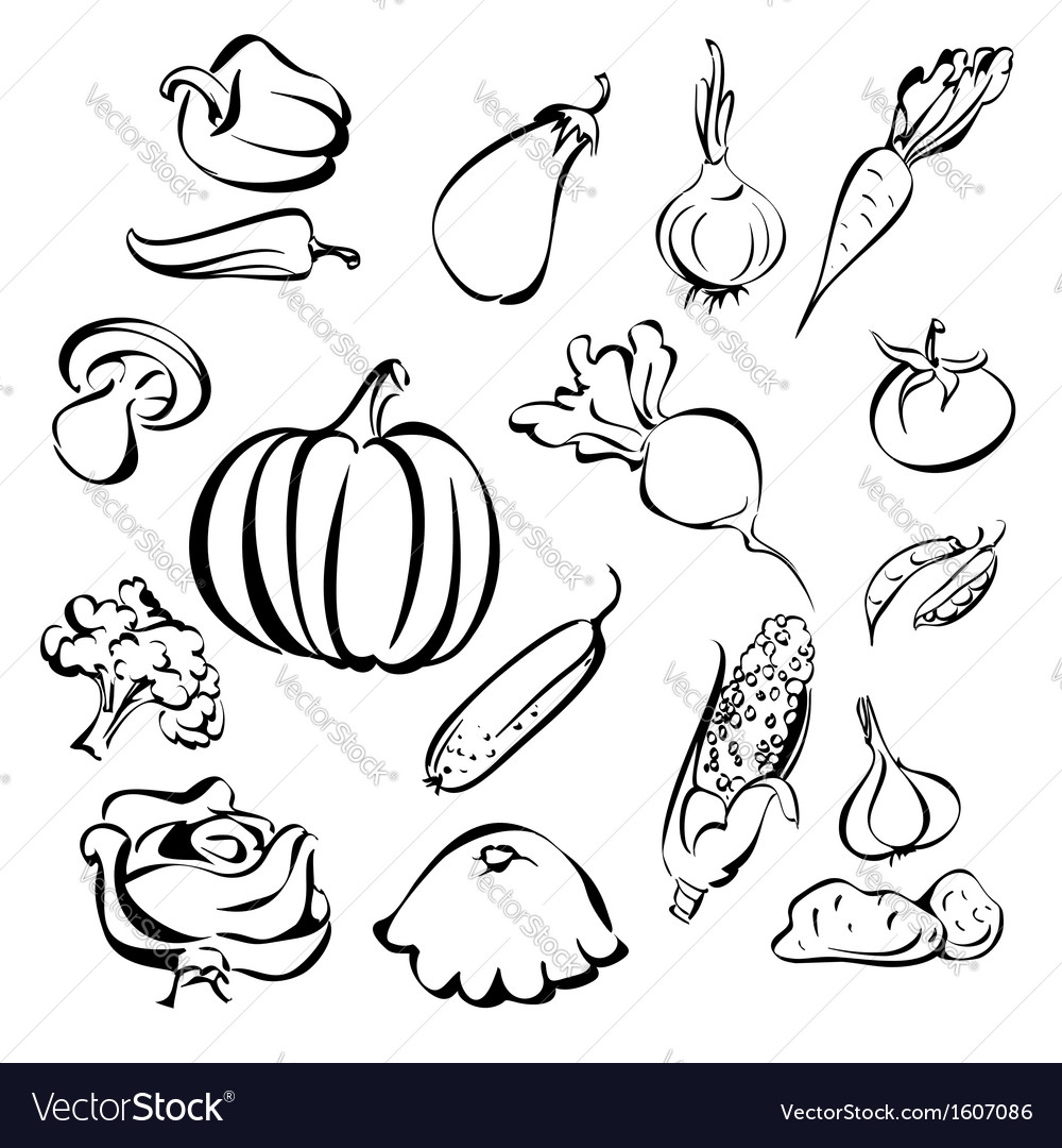 Vegetables icon set sketch vector | Price: 1 Credit (USD $1)