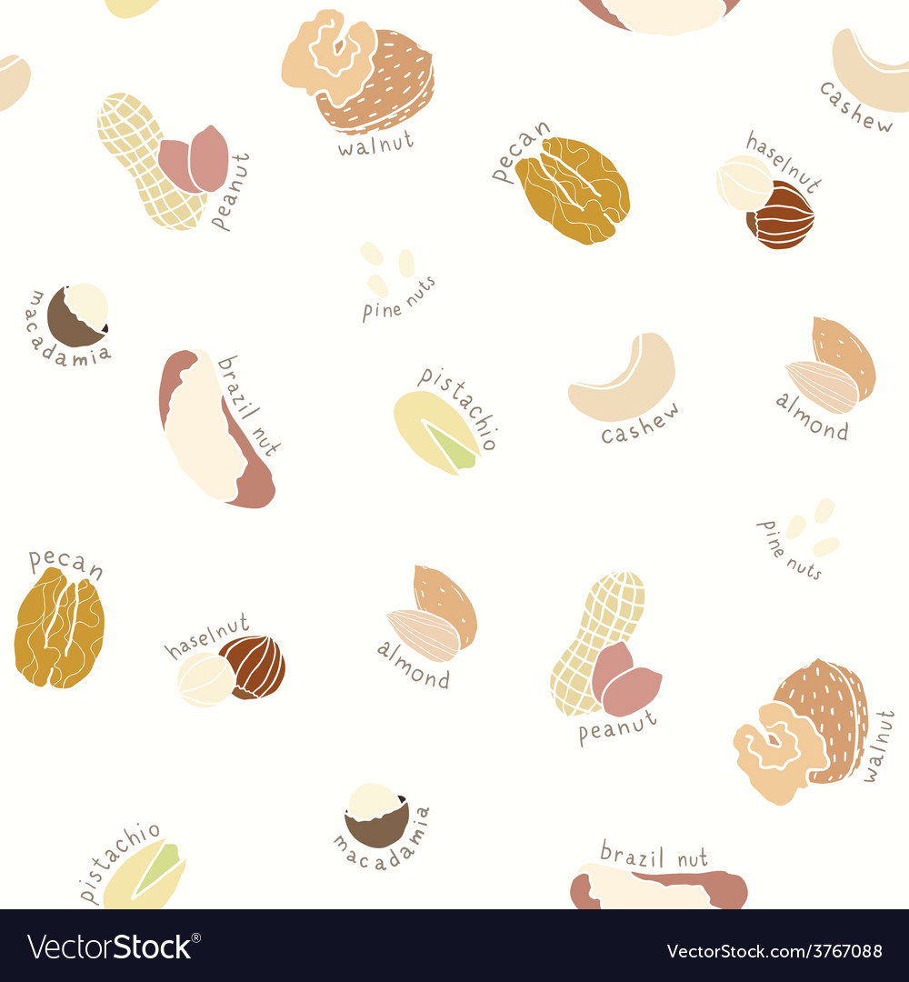 Different nuts pattern vector | Price: 1 Credit (USD $1)