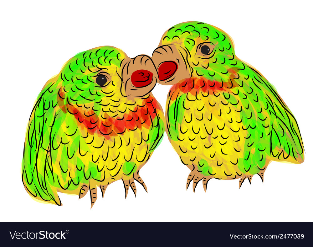 Parrots vector | Price: 1 Credit (USD $1)