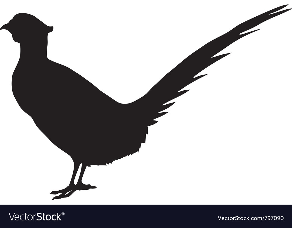 Silhouette of pheasant vector | Price: 1 Credit (USD $1)