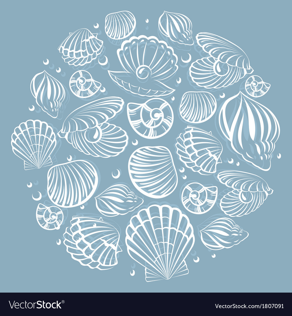 Seashell round design element vector | Price: 1 Credit (USD $1)