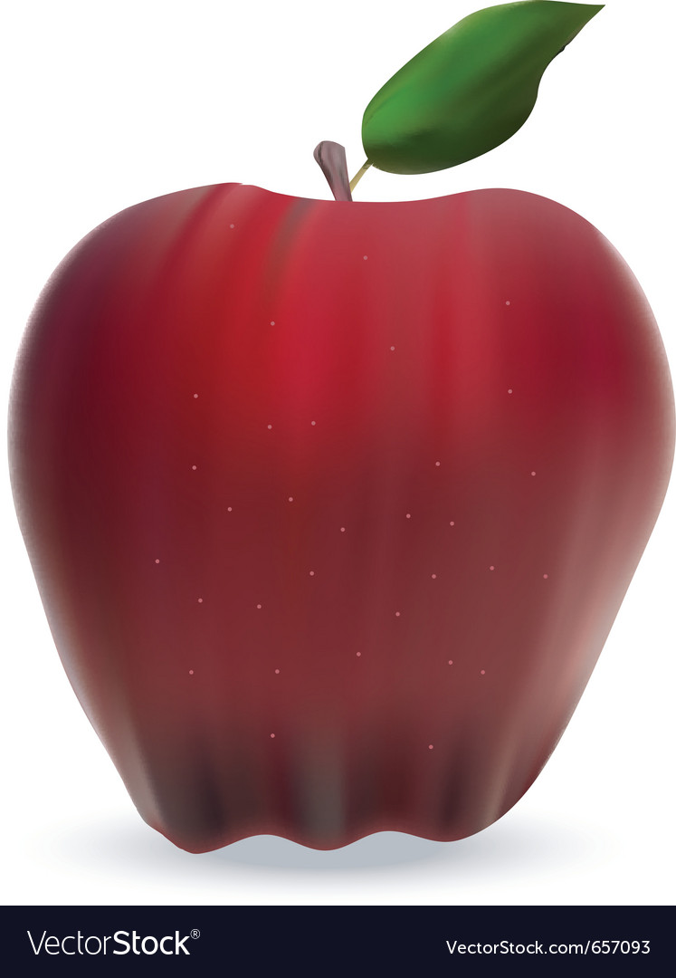 Apple isolated on white vector | Price: 1 Credit (USD $1)