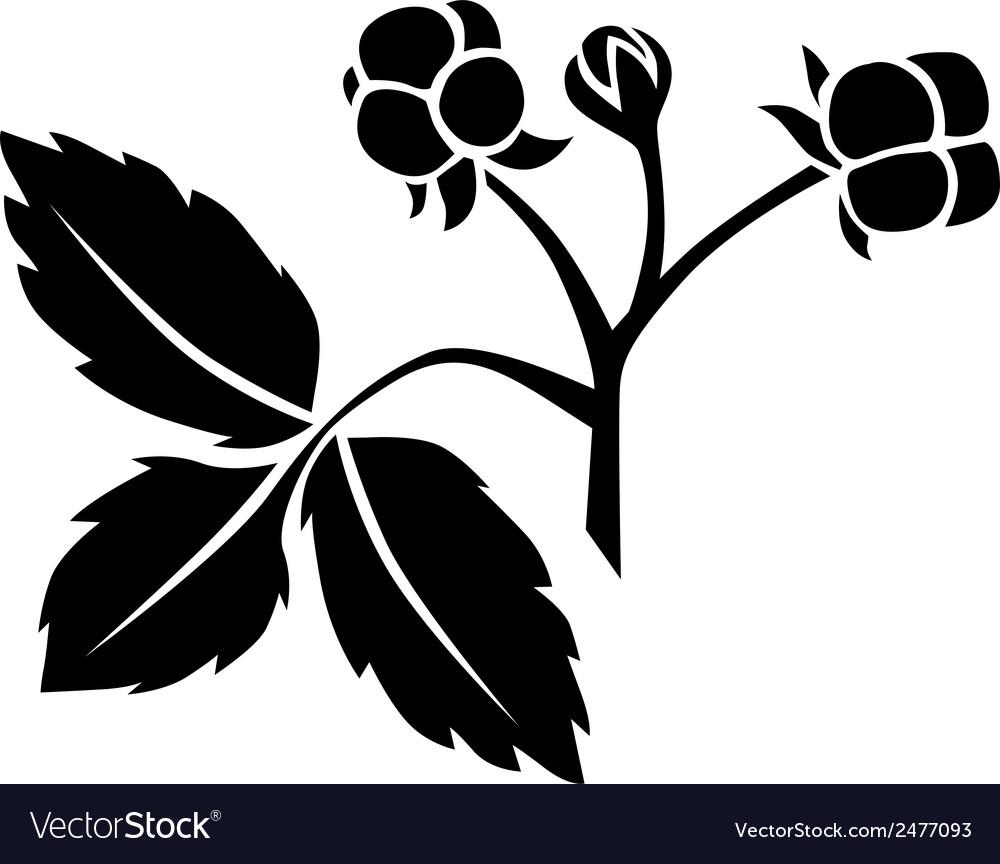 Stoneberry vector | Price: 1 Credit (USD $1)