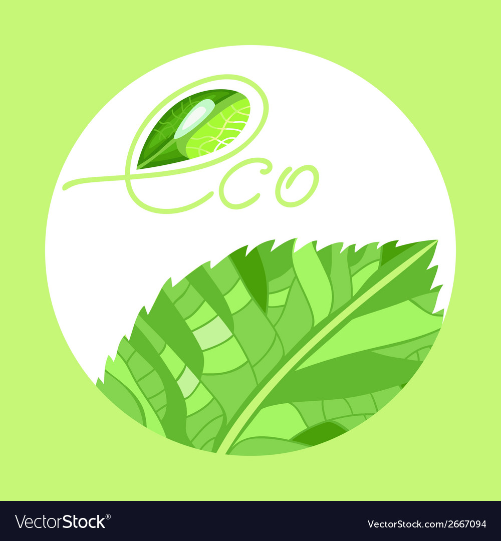 Emblem eco product vector | Price: 1 Credit (USD $1)