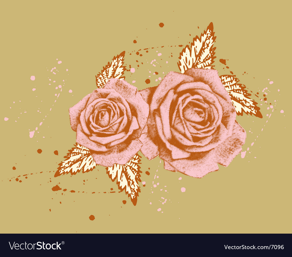 Beautiful rose vector | Price: 1 Credit (USD $1)