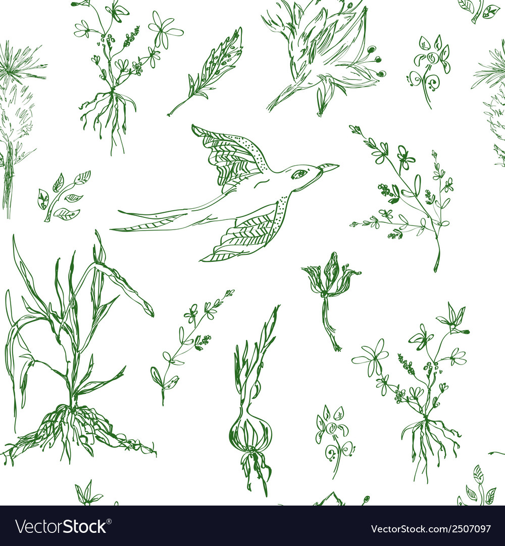 Garden flowers seamless pattern sketch vector | Price: 1 Credit (USD $1)