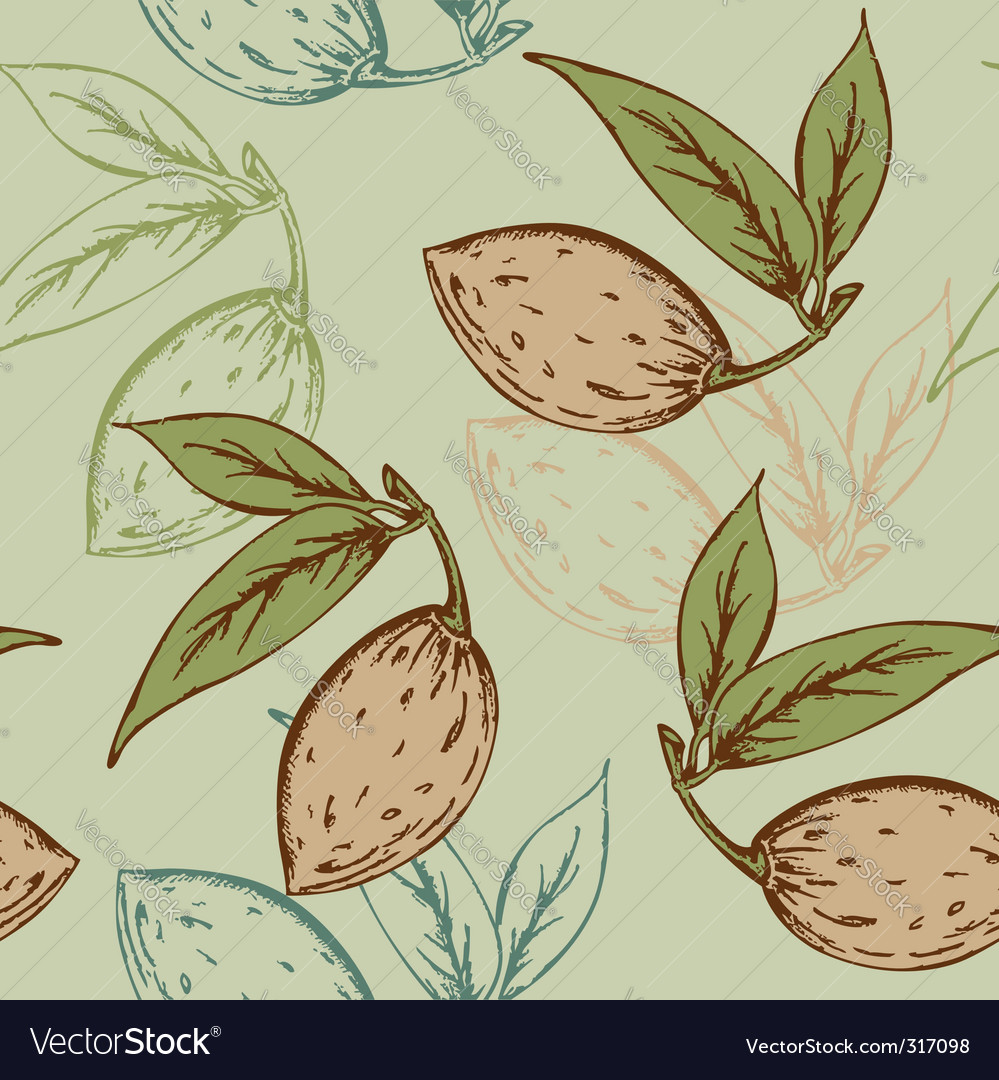 Almond pattern vector | Price: 1 Credit (USD $1)