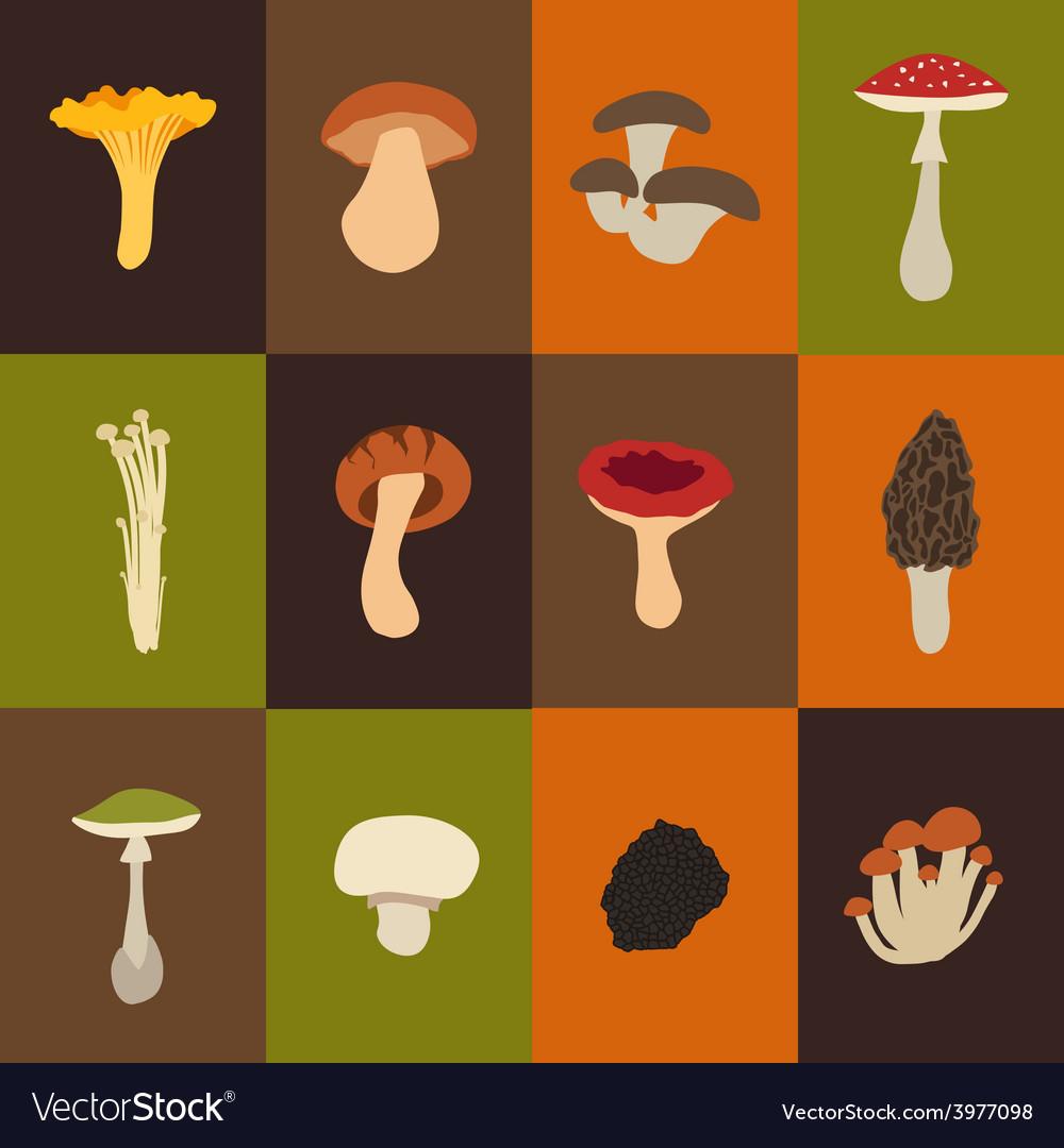 Mushroom set with flat design vector | Price: 1 Credit (USD $1)