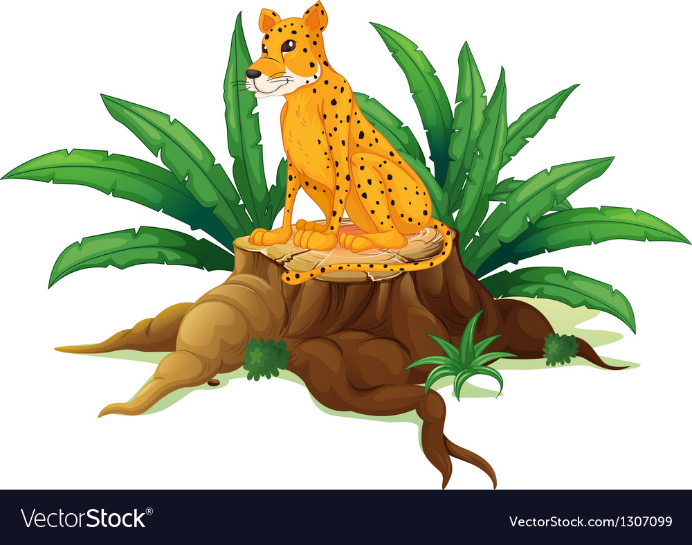 A trunk with a cheetah vector | Price: 1 Credit (USD $1)