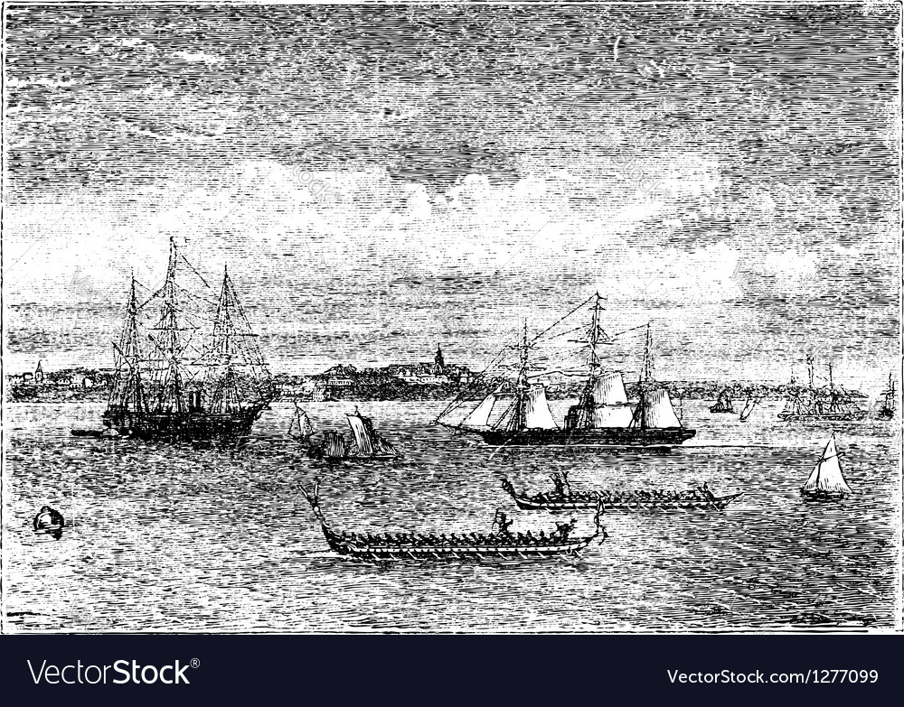 Auckland harbor vintage engraving vector | Price: 1 Credit (USD $1)