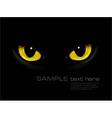 Cat eyes in dark night vector