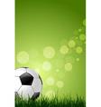 Soccer ball on green grass background vector