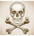 Engraving skull and bones retro style vector