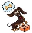 Dreaming dachshund vector